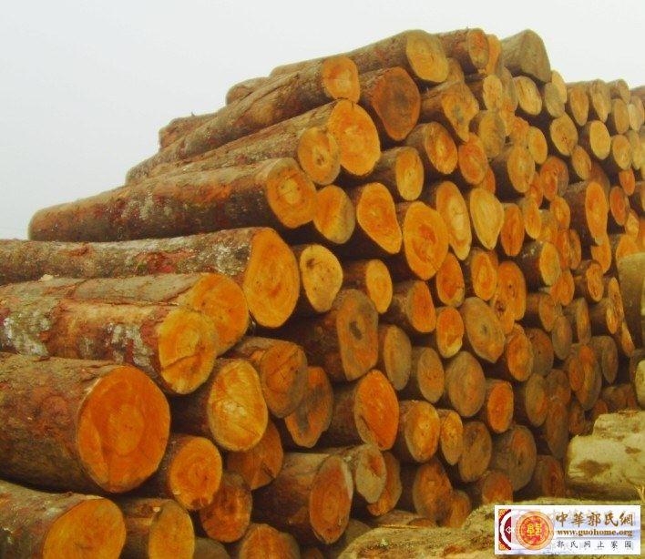 木材2.jpg